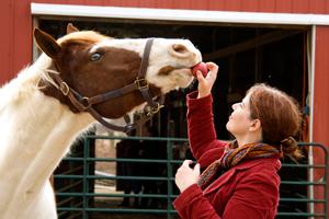 Pamela & her horse Skye