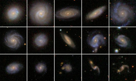 Grid of SDSS bulgeless AGN host galaxies
