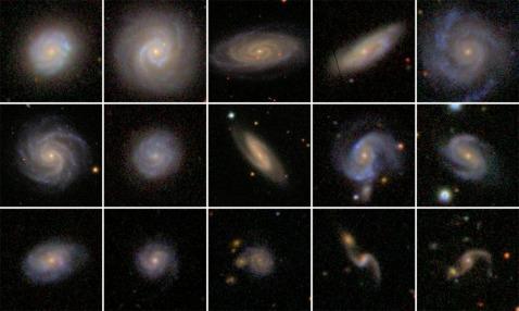 Grid of SDSS bulgeless AGN host galaxies