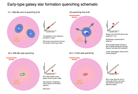 A cartoon version of how we think ellipticals shut down their star formation.