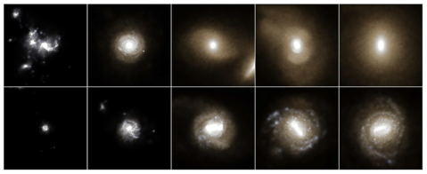 Two galaxies from the Illustris simulation evolving in time from left to right, from when the universe was a quarter its current age, to the present. The top galaxy shows a massive, red, elliptical-shaped galaxy forming after a series of mergers with other systems. The bottom galaxy reveals the formation of a smaller, bluer, disk-shaped galaxy forming after a less violent history of interactions. Images and text courtesy of the Illustris project.