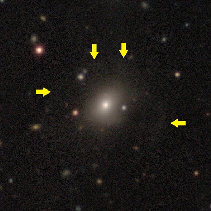 Example 3. Faint tidal debris is visible around the main galaxy in a shell-like shape. Image courtesy DECaLS/Galaxy Zoo.